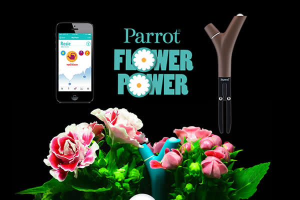flower power wireless plant monitor sensor technology by parrot. Black Bedroom Furniture Sets. Home Design Ideas